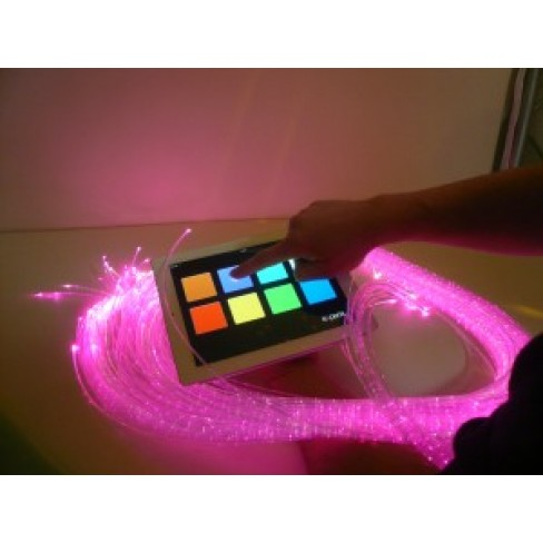 IRiS: Your Multisensory Room Assistant