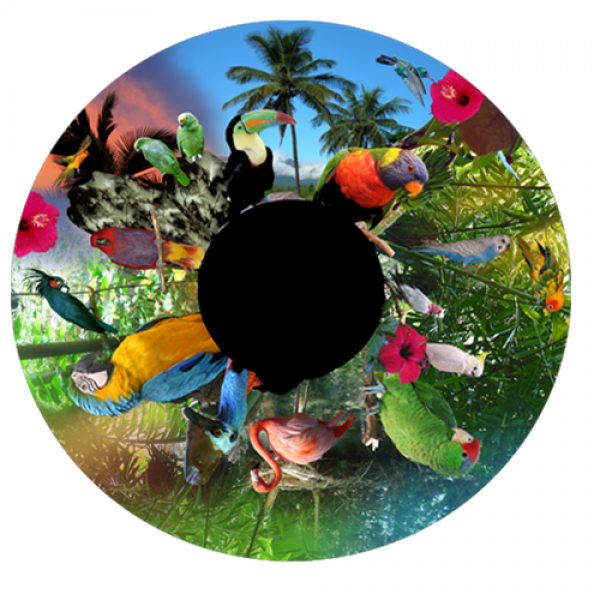 Birds of Paradise Effects Wheel