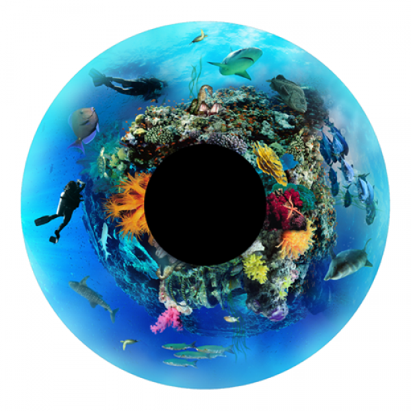 Under the Sea Effects Wheel